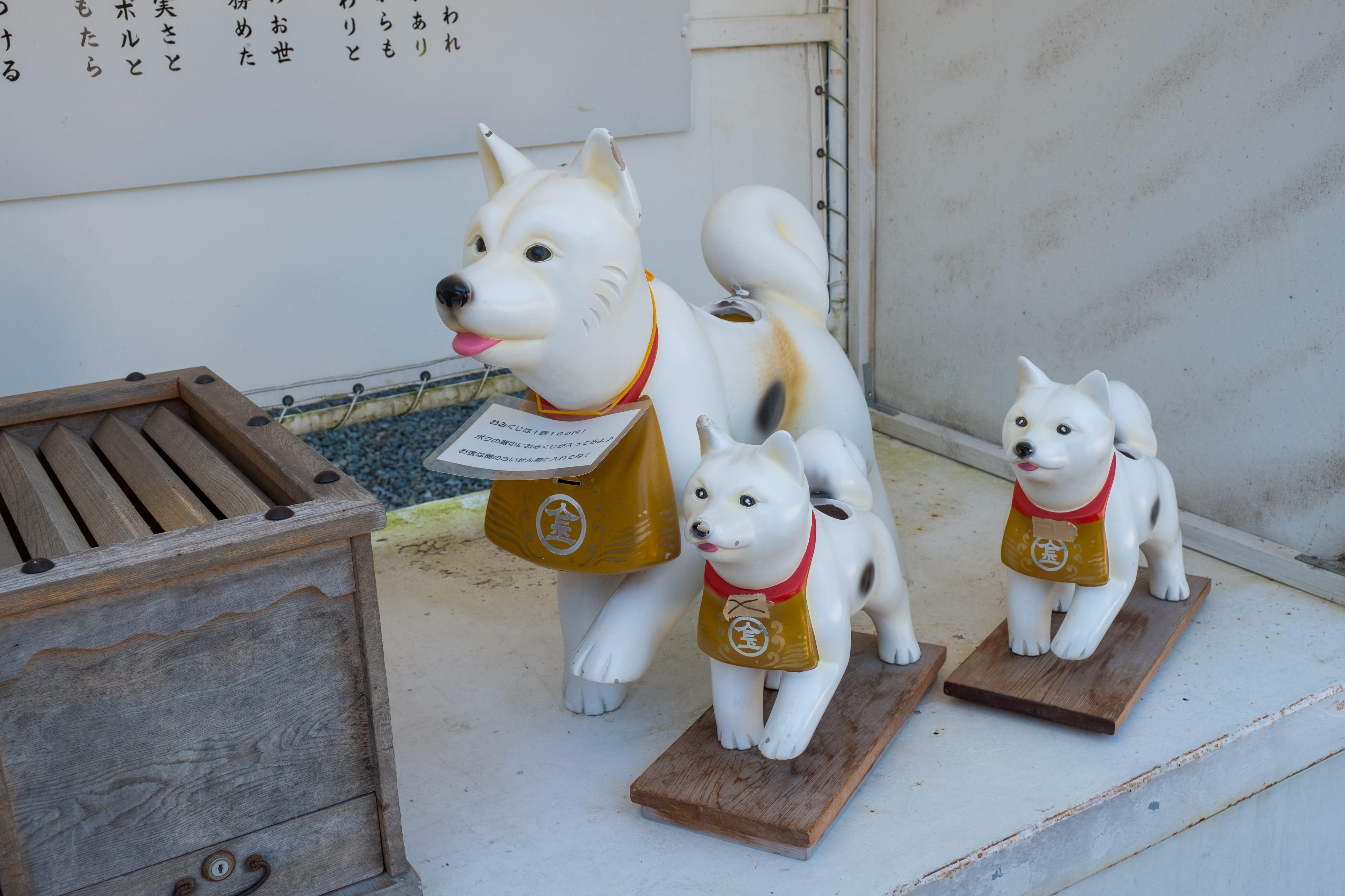 785石階最難參拜!日本香川「⾦刀比羅宮」供奉金毘羅神!