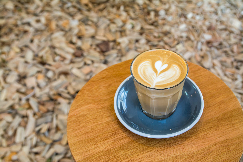 韓國首爾有鋪滿木塊的咖啡廳?彷彿在森林裡享用午茶氛圍…
