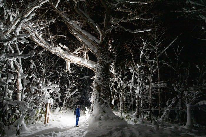 冬季限定浪漫 星空下的雪鞋健行