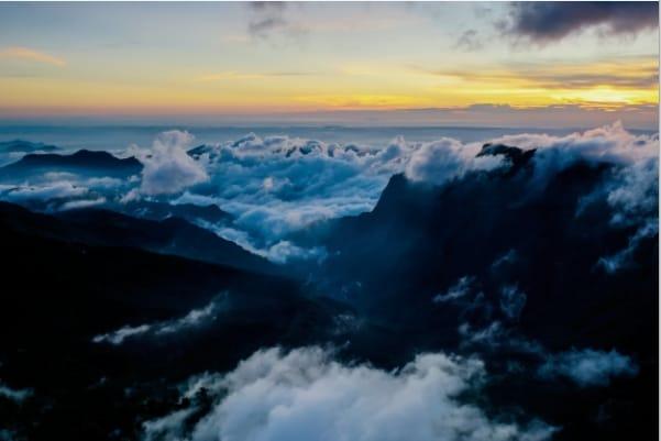 從曙光到觀星 24小時美景不打烊 【阿里山國家森林遊樂區】