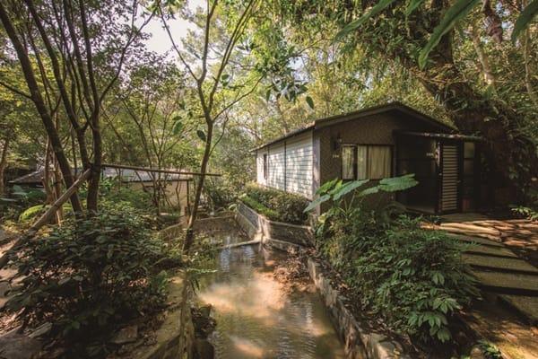 消暑桃花源 防疫森呼吸 大板根森林溫泉酒店
